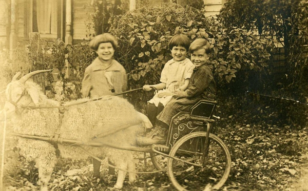 Audrey with Wendell and Thelma in cart